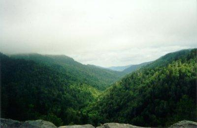 View from Newfound Gap